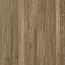 TANGO Дуб Мокко браш/Oak Mocha DG  1-полосный